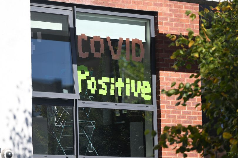 Covid Positive sign in window